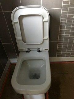 toilet 1b